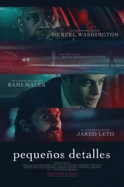 Película Pequeños detalles hoy en cartelera en Cines Cristal de Lugo